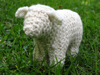 Sheep_5_small2