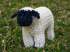 Sheep_small