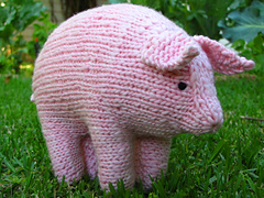 Pig3_small