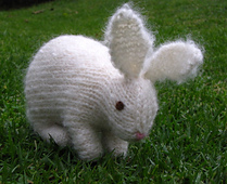 Rabbit1_small_best_fit