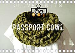 Passport_cowl8_small