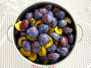 Plums_small2