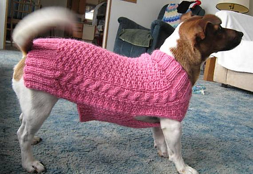 Ravelry Dog Sweater Pattern By Kathryn Mcconaghie