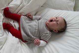 Juno_3__yawning__small2