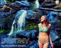Destinypics_small_best_fit