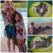 Sharktowelcollege_small_best_fit