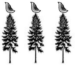 Tree_and_bird_left_small