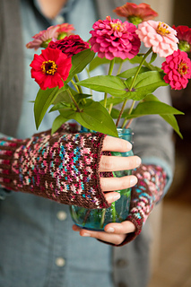 Gingermitts_24_small2