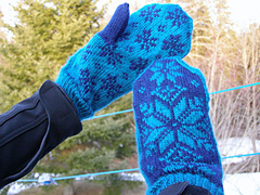 Navyteal_mitts4_small