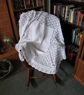 Foliage_lace_shawl_mar_2012_small_best_fit