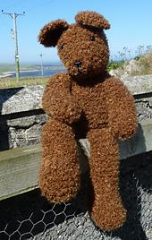 Ready_teddy_bear_001_small_best_fit