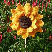 Sunflower_pincushion_small_best_fit