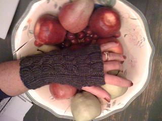 Emily_s_fingerless_gloves_small2