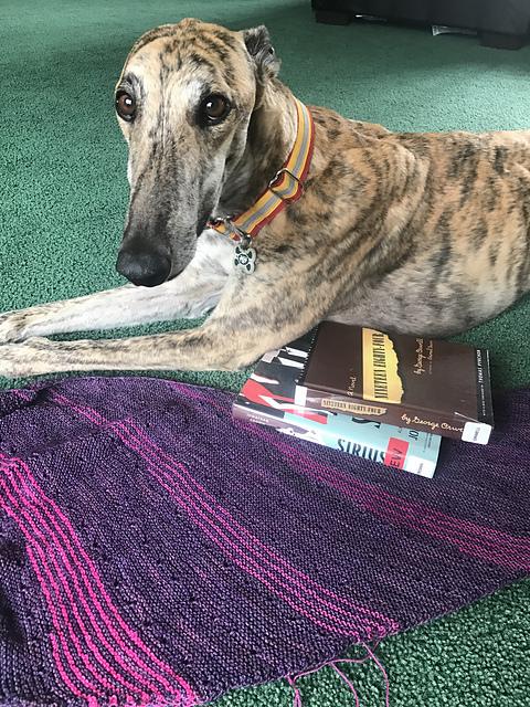Nutmegknitter's Solaris WIP and yarn along books