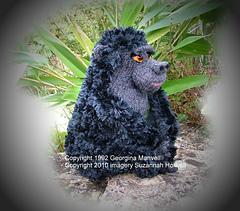 Gorillacopyright_small