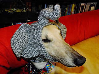Ravelry: peepe's Animal Snood Hats for Greyhound Adoption of