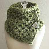 Lattice_moss_1a_small_best_fit
