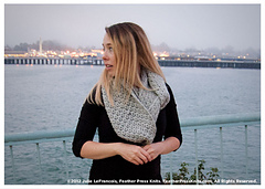 Cowl-3478-rav_small