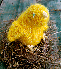Easter-chick-425_small