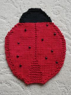 Ladybug_7-19-11_small2