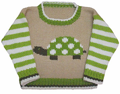Turtle_sweater_low_small