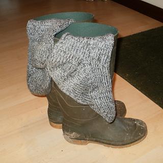 Wellies___socks_small2
