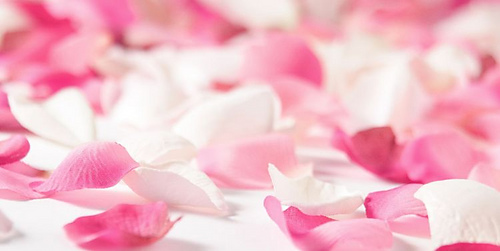 Beneficios-del-agua-de-rosas_medium