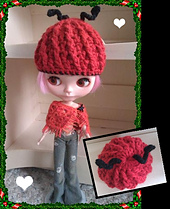 Hat_ladybird_small_best_fit