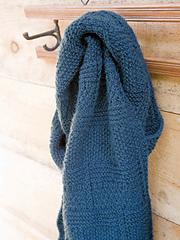 Ng_men_cuvier_scarf_lg_small