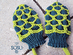 Turtle_mittens2_small