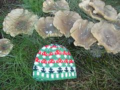 Mushroom_baby_hat1_small