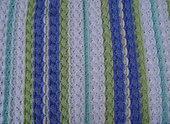 Striped_shell_closeup_small
