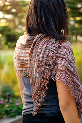 Dragonfly_shawl15_small_best_fit