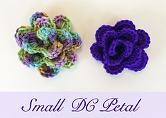 Img_0856b_small