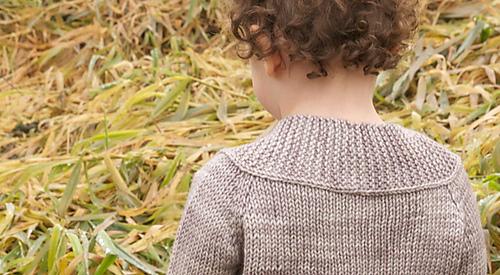 Sc-harvest-24_medium