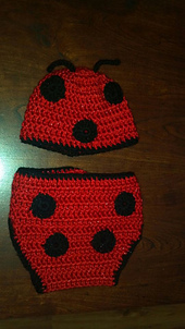 Baby_ladybug_small_best_fit