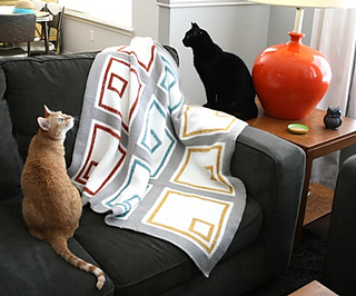 Kitties_for_vp_small2