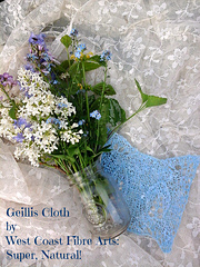 Geillis_cloth_no_starch2_small