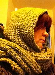 Hoodedscarf1_small