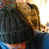 Hermans_hat_2_small_best_fit
