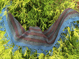 Terrier_puppies_grape_shawl_test_knit_024_small2