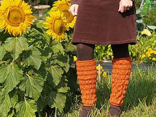 Pumpkinpatchlegwarmers01_small2