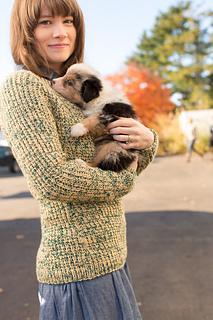 Rhinebeck_sweater-108_small2